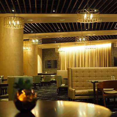 Theatrical Curtains for Commercial, Architectural, and Themed Environments